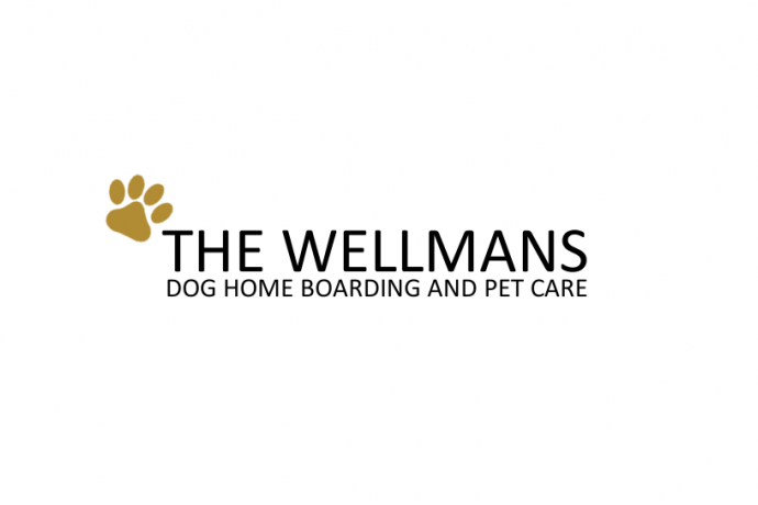 The Wellmans logo